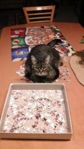 puzzle helper